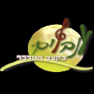 לוגו חאן ענבלים